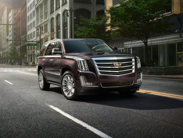 New Platinum Collection Added Features Elevate Escalade